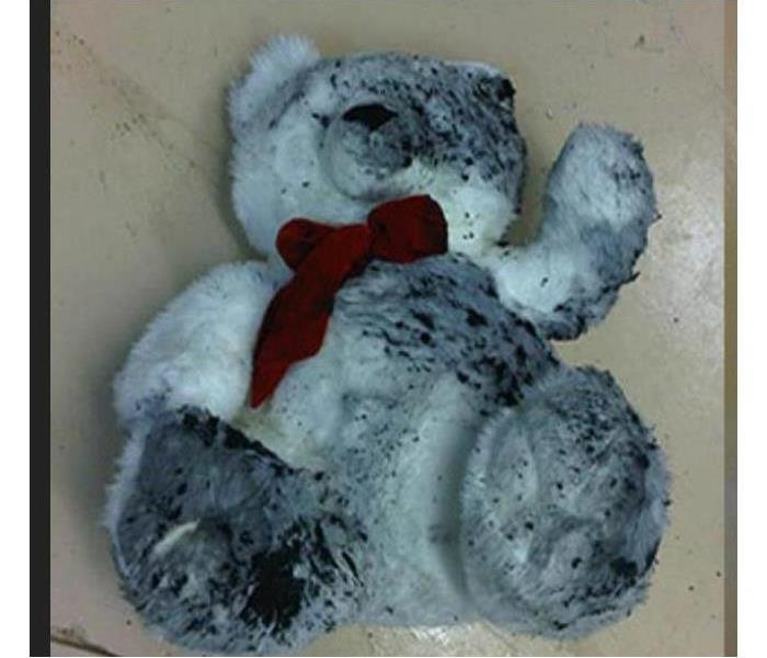 Stuffed bear damaged from fire